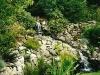 davidsons-lanscaping-salem-ponds-img6
