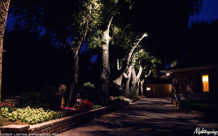 Outdoor Lighting | Davidson's Landscape