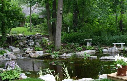 backyard_paradise_II